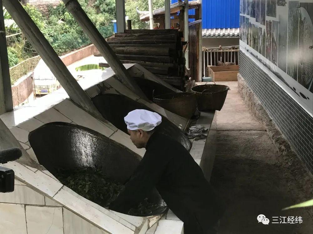 江城县国庆乡:用茶叶托起增收致富梦